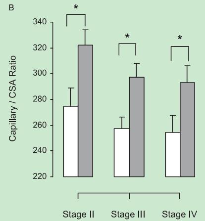 肺康复对GOLD II--IV级的COPD患者外周肌纤维重塑的影响