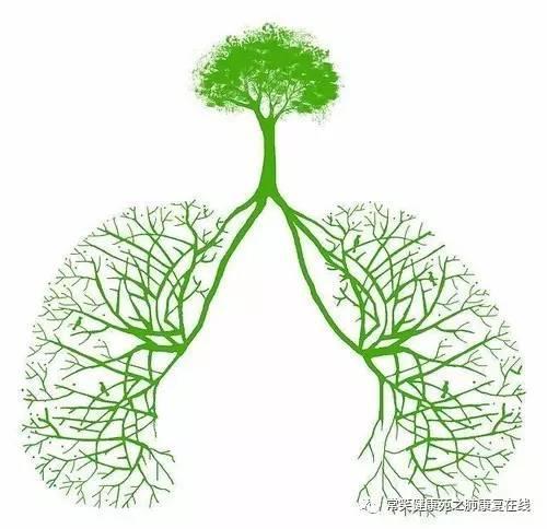 肺康复|有效咳嗽预防术后肺不张